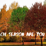 Which Season Are You In?