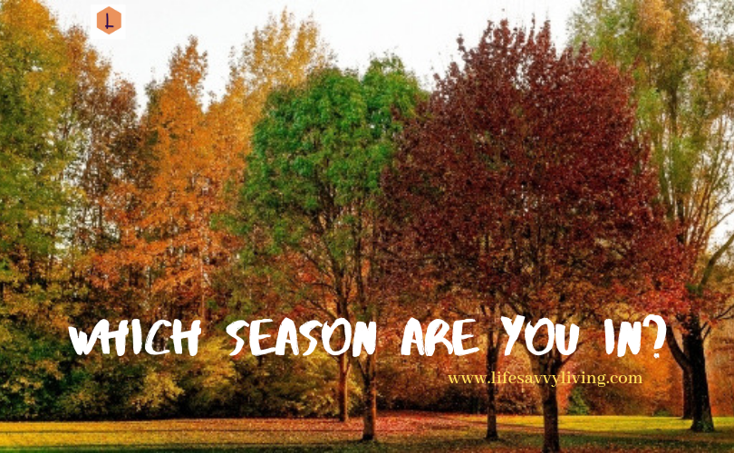 Which season are you in_